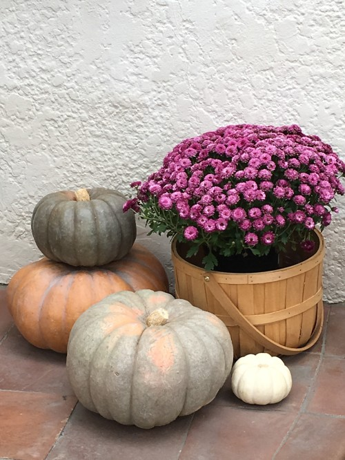 fall-decor1