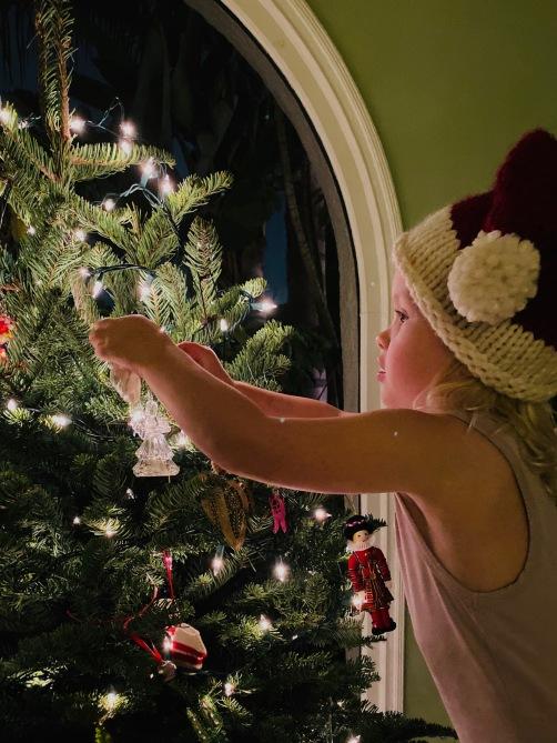 M Tree Holiday